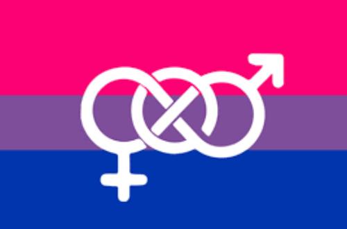Article : La bisexualité